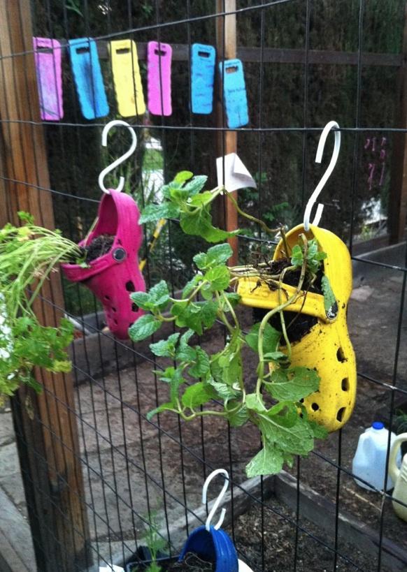 The garden at Children's Community School, Van Nuys