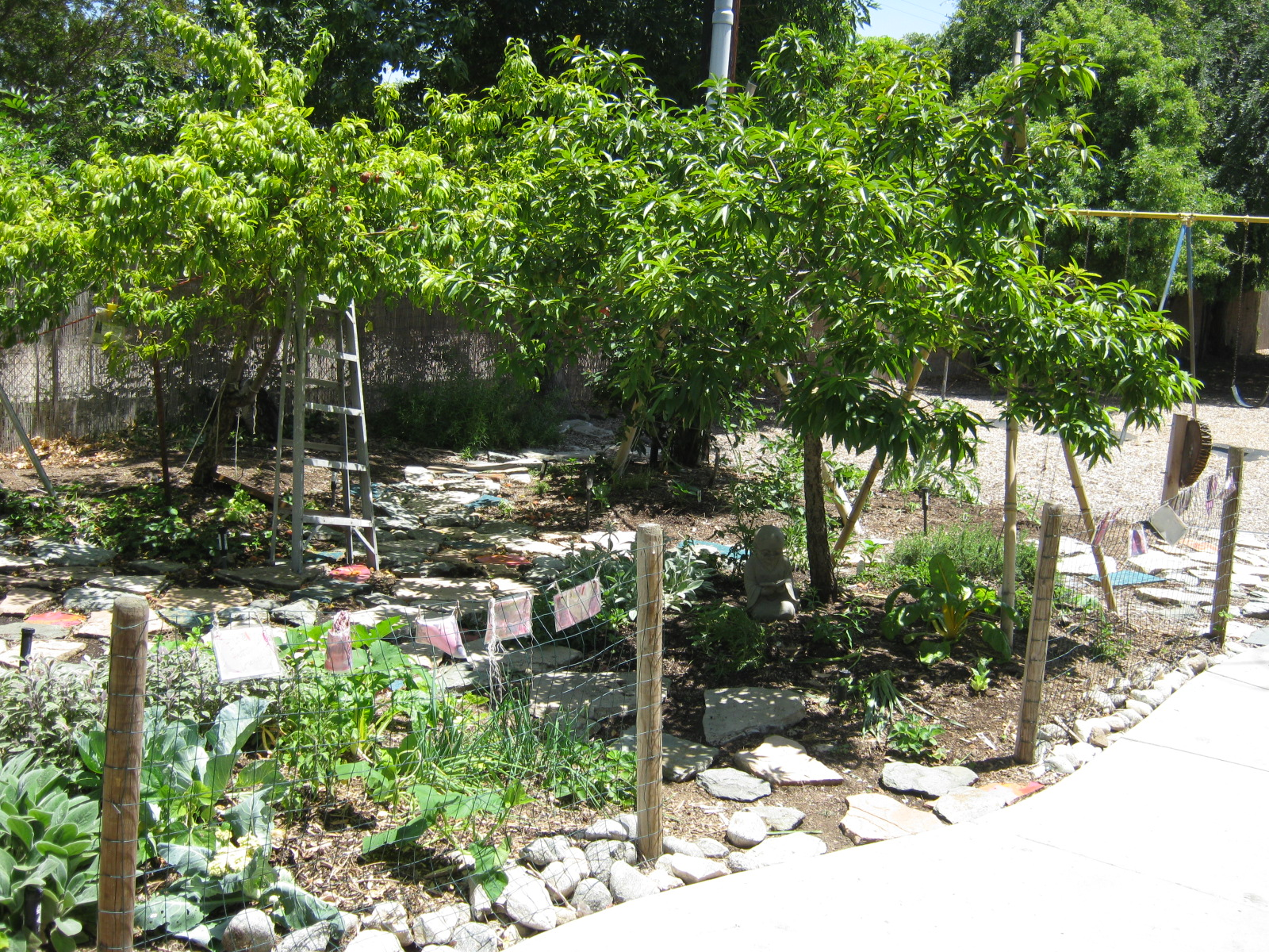 The garden at Barnhart School