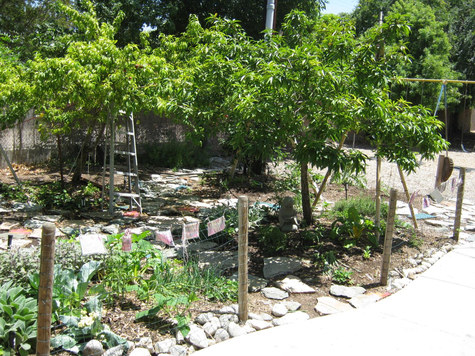 The garden at Barnhart School