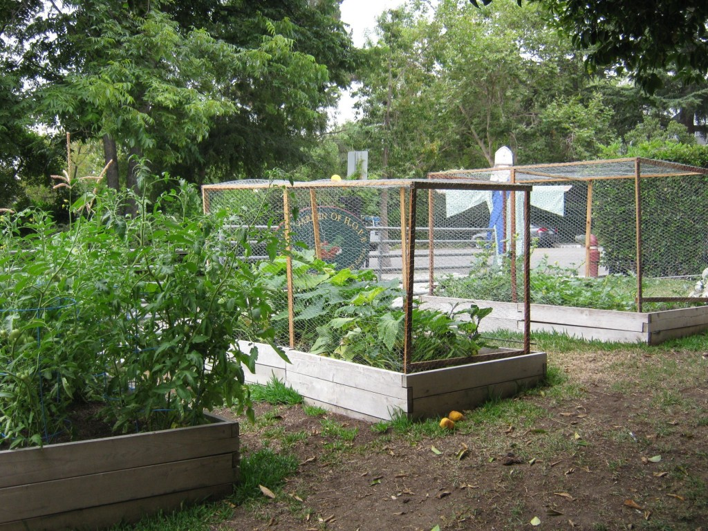 Gooden's Asst. Head of School, Marianne Rust, included this garden as part of her dissertation.