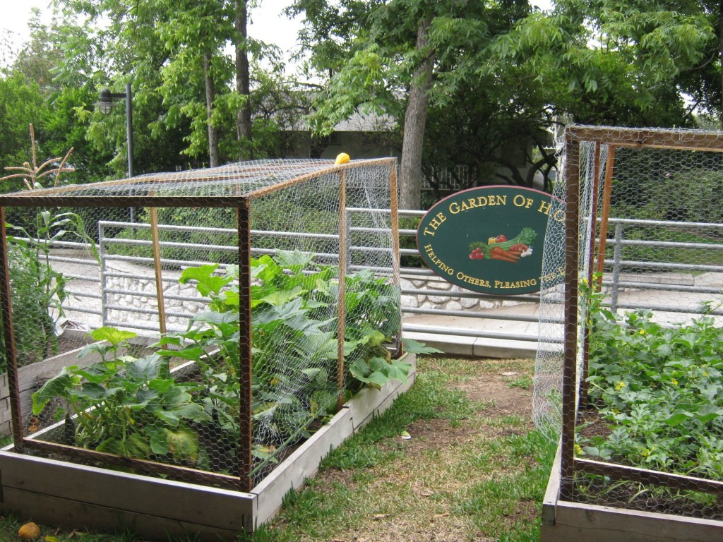 School gardens teach and inspire!