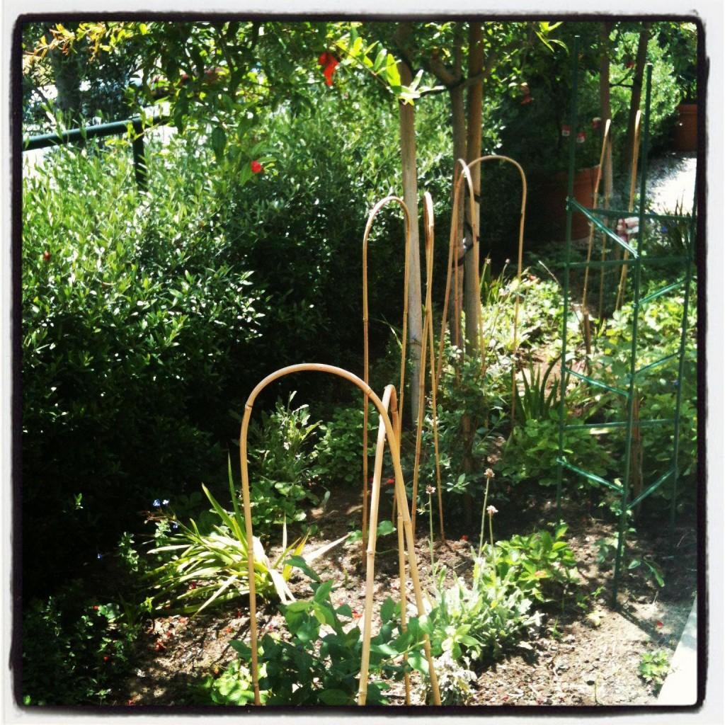 Gorgeous front garden at Montessori Shir-Hashirim Preschool