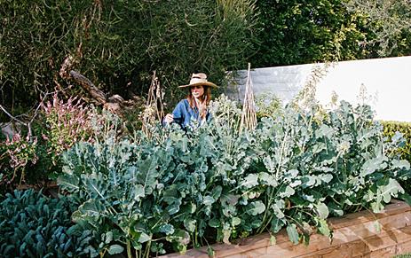 Lauri Kranz, Edible Gardens LA
