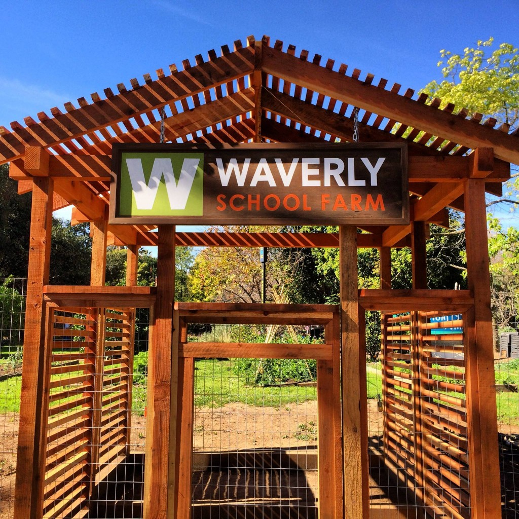 Isn't this gorgeous? The new pergola at the farm is absolutely gorgeous--many thanks to Waverly parents Simon Morgan and Esteban Nuno for their generous design and construction skills, and, of course, to Waverly staff member Carlos Aldaco for absolutely everything.