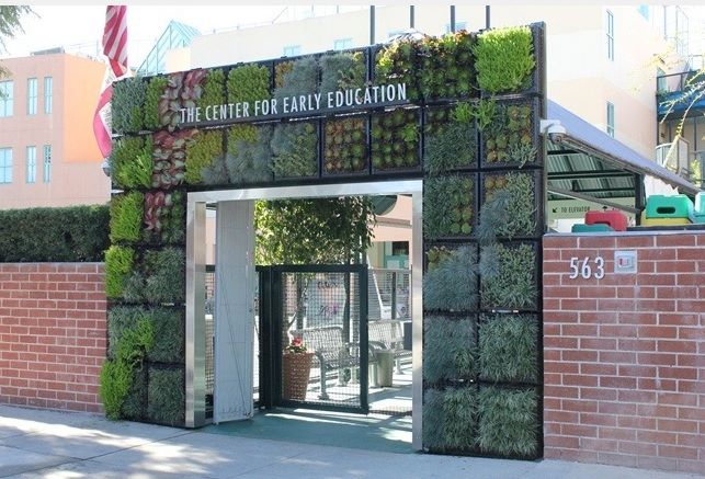 Center For Early Education greening project