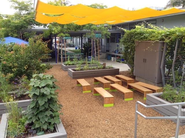 Classroom Garden Ideas ~ July beyond the brochure