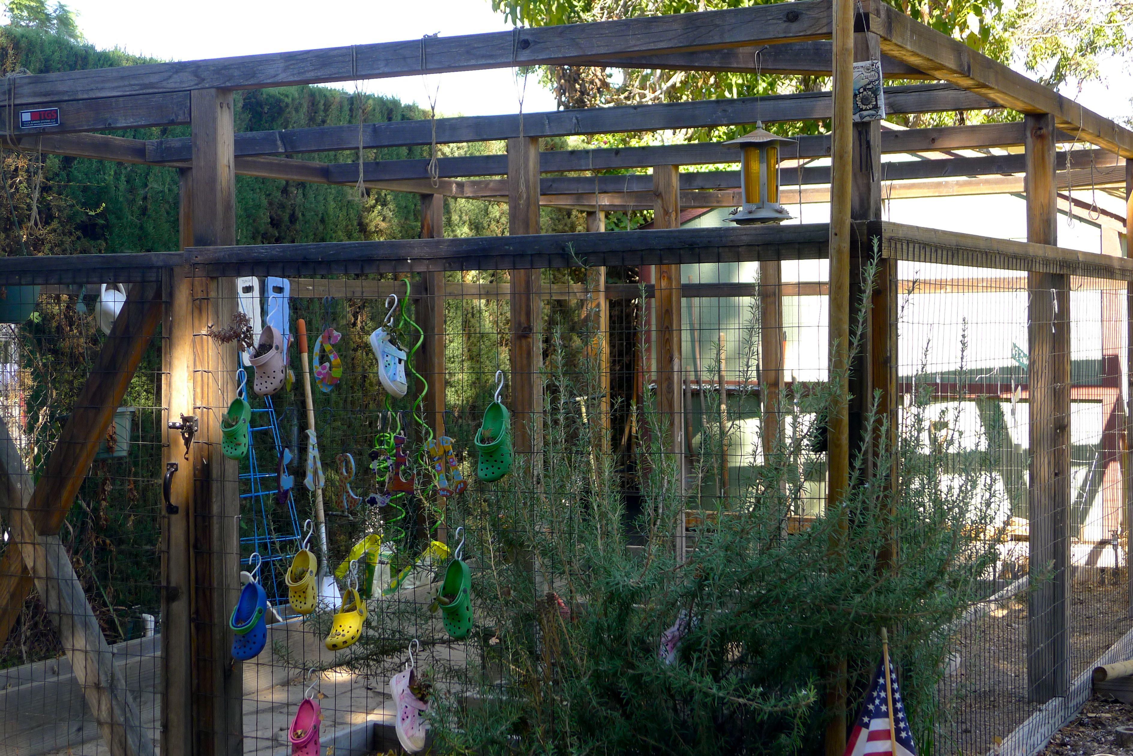 CCS Garden 2