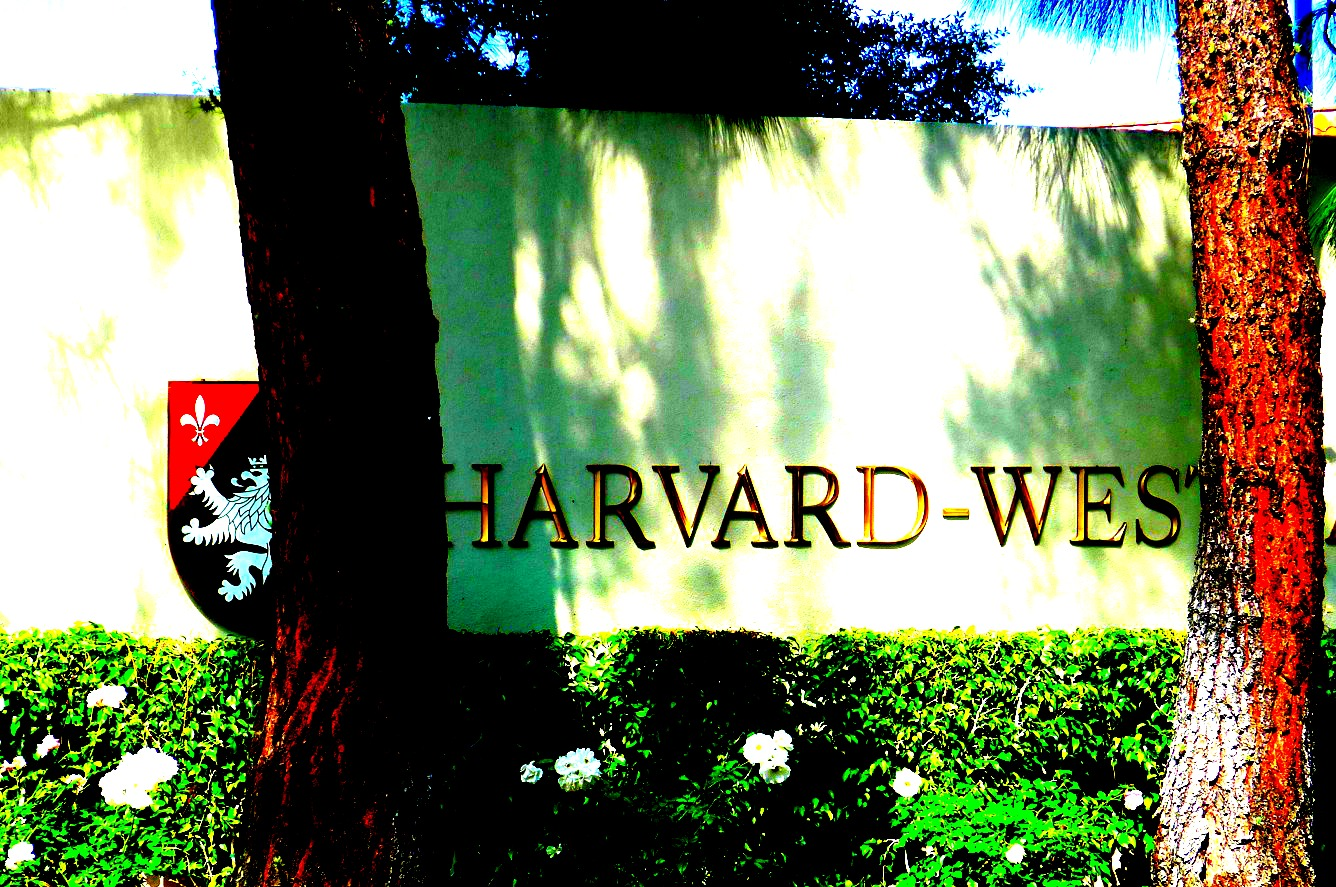 What do you need to get into Harvard?