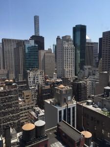 NYC Viewjpg